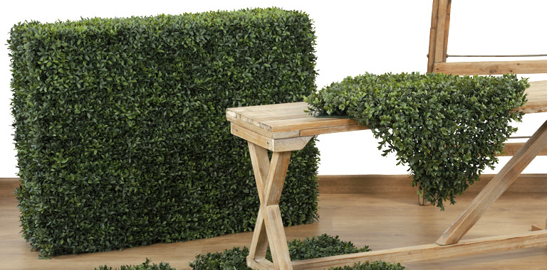 New Boxwood collection