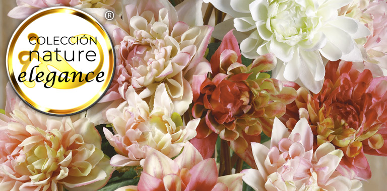nature elegance flowers